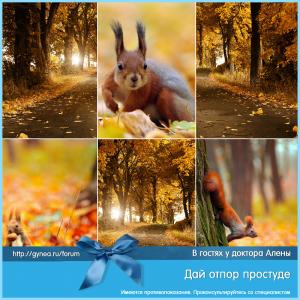 prostuda_viferon_1_15092015